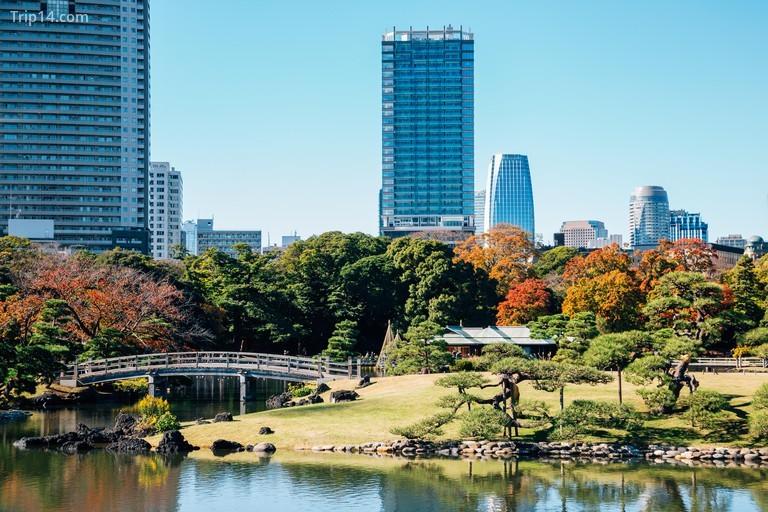 Vườn Hamarikyu và các tòa nhà hiện đại vào mùa thu ở Tokyo, Nhật Bản