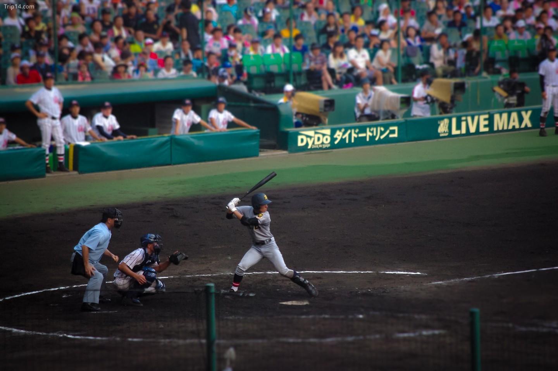Giải vô địch bóng chày trung học toàn Nhật Bản hàng năm lần thứ 95 tại sân vận động Koshien   |