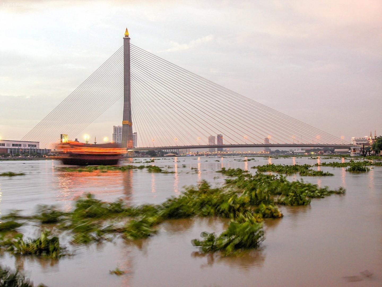 Cầu Rama VIII   |