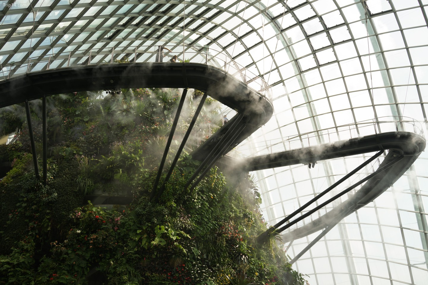 Gardens by the Bay ở Singapore