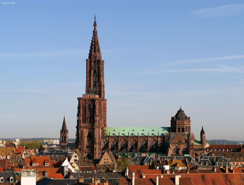 Nhà thờ Strasbourg   |