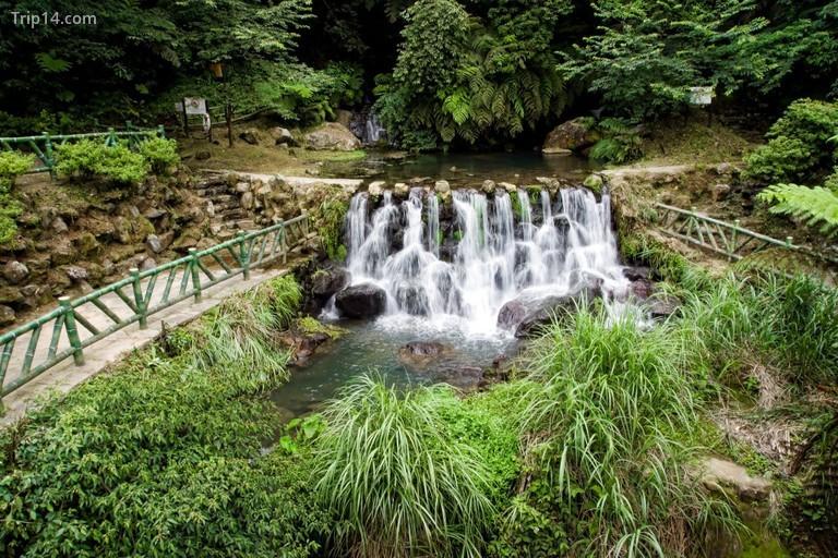 Vườn quốc gia Yangmingshan - Trip14.com
