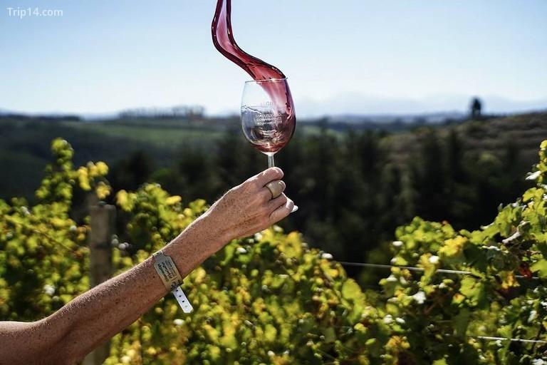Elgin Coolfest đưa đón những người tham gia lễ hội xung quanh các nhà máy rượu vang trong ở Thung lũng Elgin