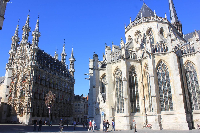Leuven's Grote Markt với Tòa thị chính ở bên trái   |