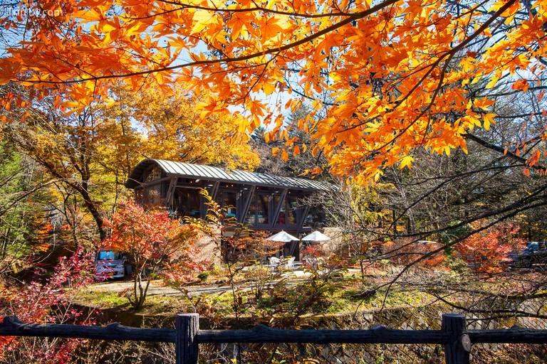 Cảnh sắc tuyệt vời của mùa thu ở Karuizawa