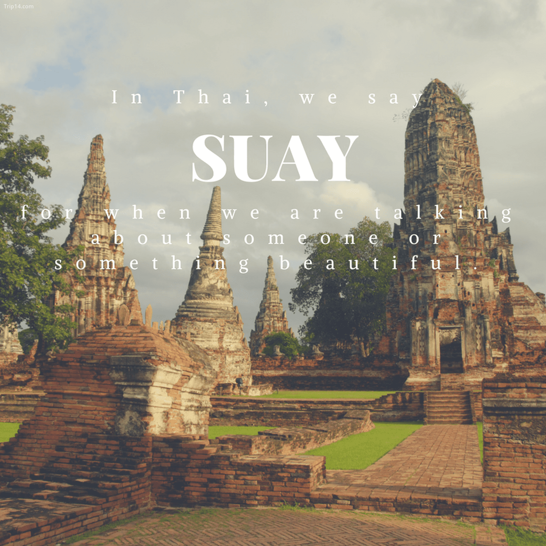 สวย: Suay