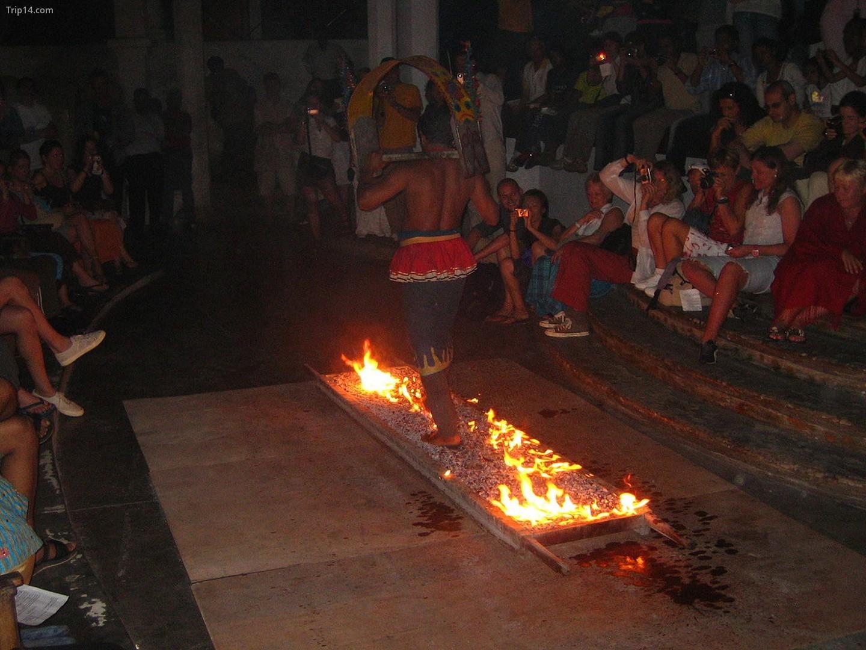 Nghi lễ Thimithi bắt nguồn từ Tamil Nadu, nhưng cũng được thực hành ở một số quốc gia bao gồm Sri Lanka   |