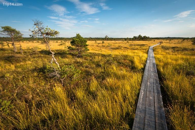 Vườn quốc gia Soomaa