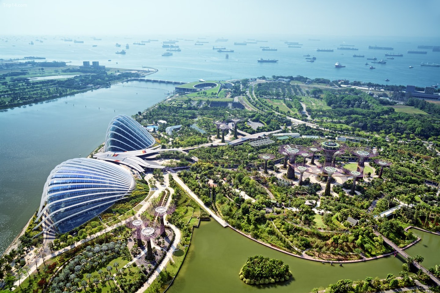 Gardens by the Bay, Singapore   |