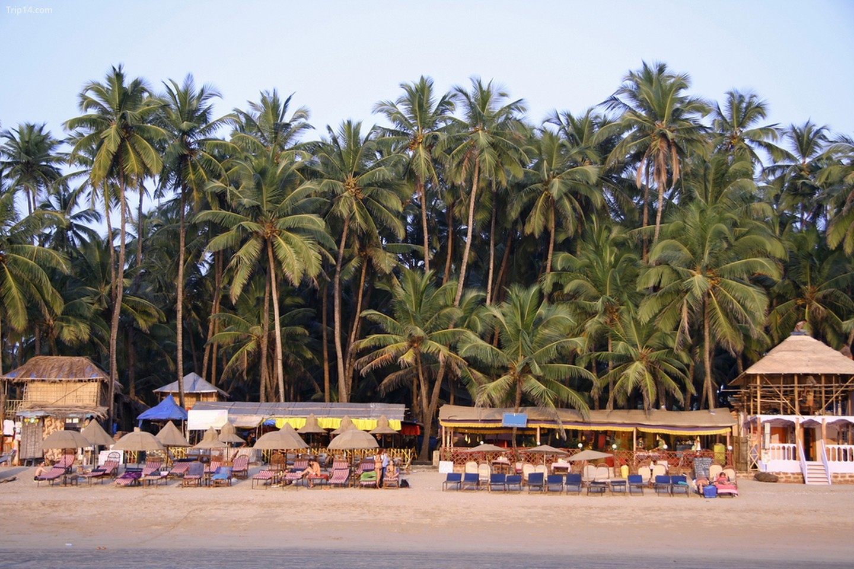Bãi biển Goa, Ấn Độ