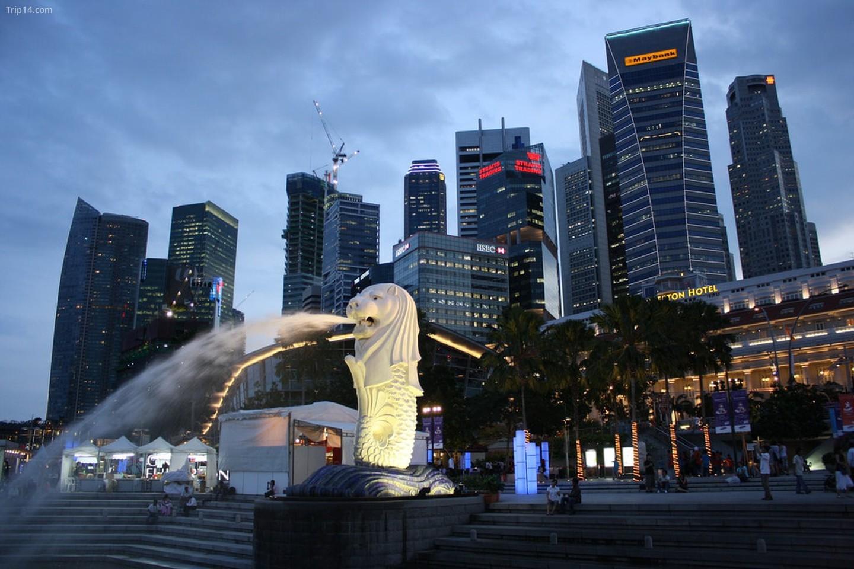Quang cảnh Merlion và Đường chân trời Singapore   |