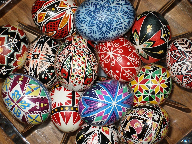 Trứng sơn màu   |