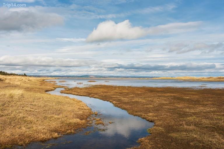Khu bảo tồn thiên nhiên quốc gia Tentsmuir