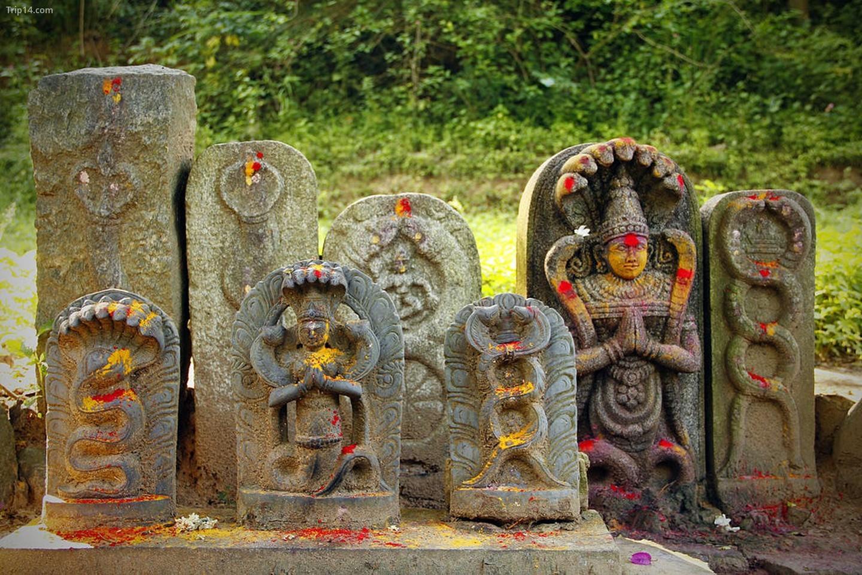 Thần tượng miêu tả vị thần rắn trong đạo Hindu Nagaraja   |