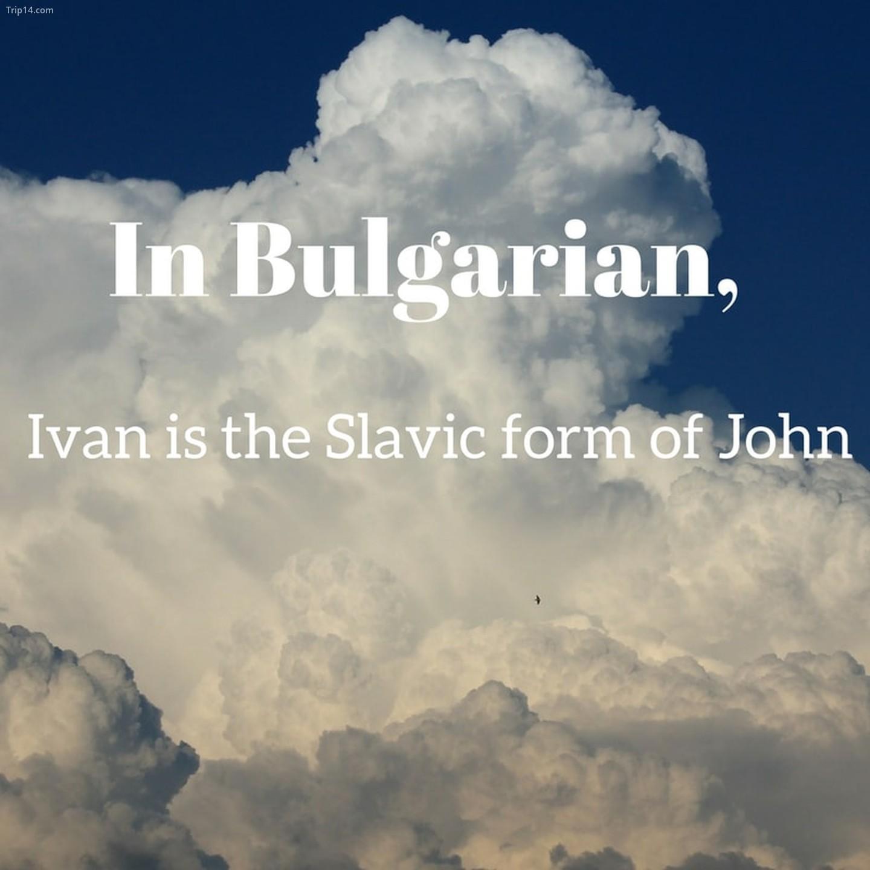 Ivan   |