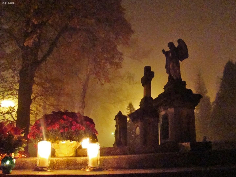 Những ngọn nến được thắp sáng tại các nghĩa trang trong Ngày lễ Các Thánh   |