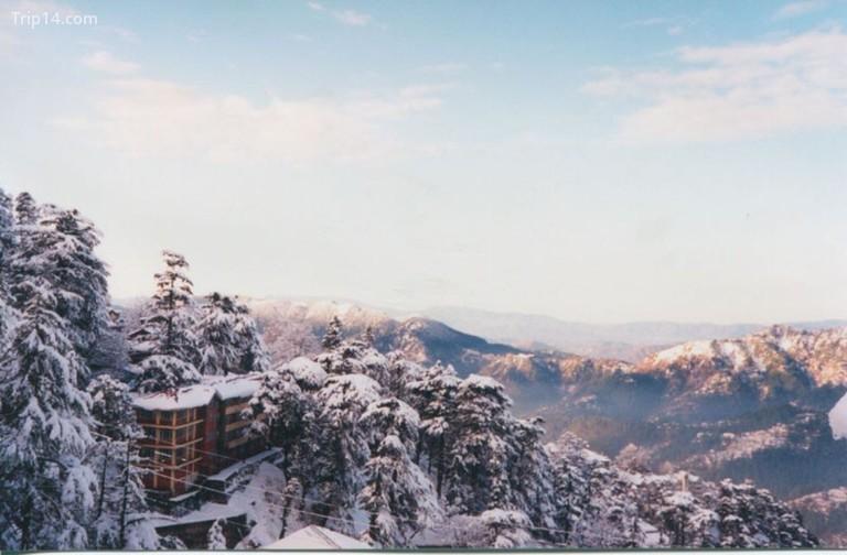 Shimla trong mùa đông © Jane / Flickr