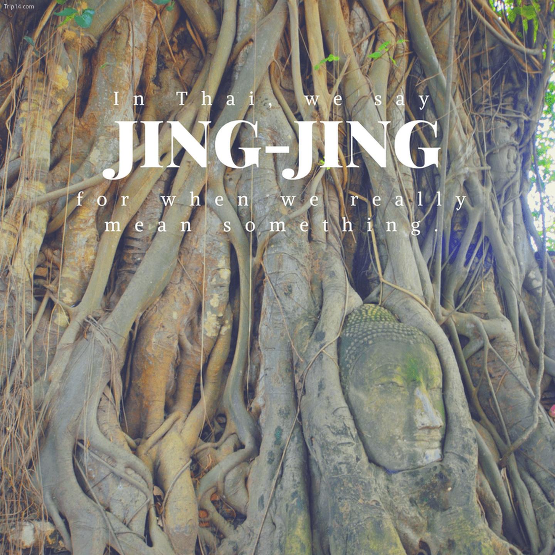 จริงๆ: Jing-jing