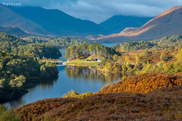 Glen Affric là một ví dụ điển hình về vùng hoang dã kỳ diệu của Scotland © Martin Birchall / Alamy Kho ảnh