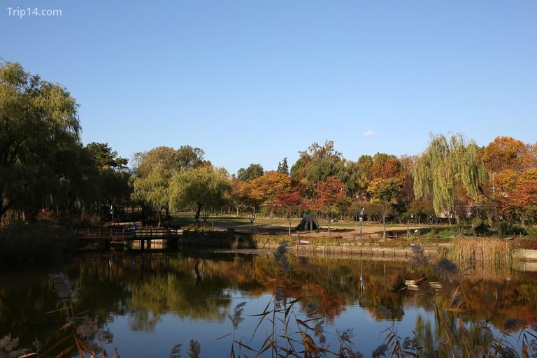 Công viên gia đình Yongsan