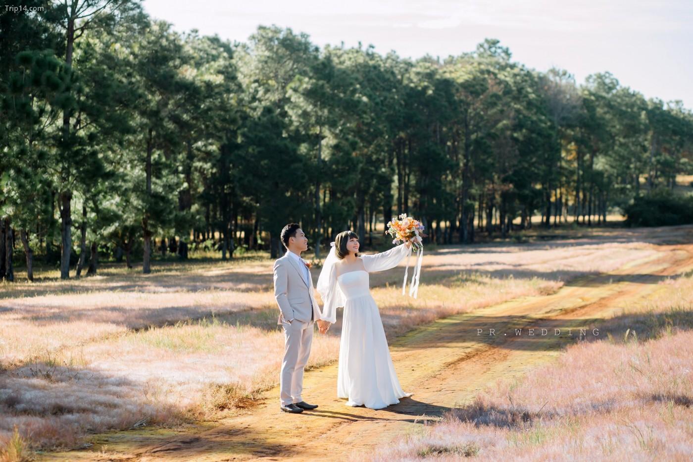 chụp ảnh cưới ở Gia Lai