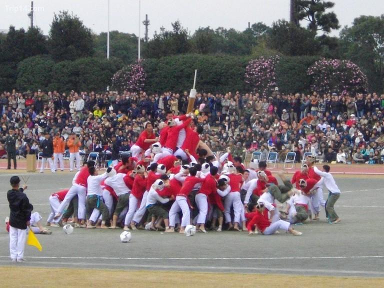 NDAJ Bo-taoshi (Cuộc thi bắt cực) © Abasaa / WikiCommons