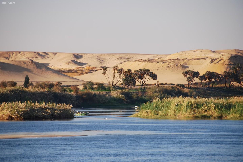 Sông Nile   |