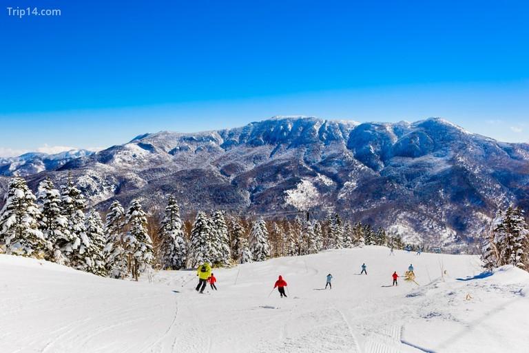 Điểm trượt tuyết ở Furano vào mùa đông