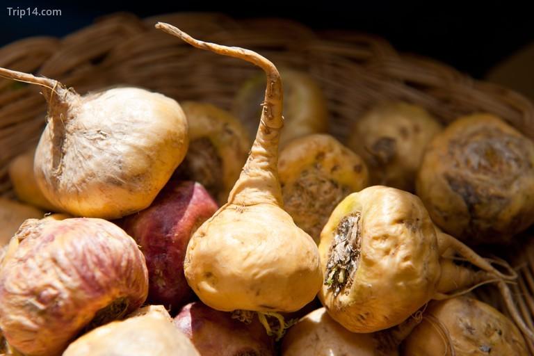 Maca là một loại rau củ giúp cân bằng nội tiết tố