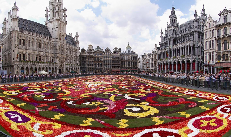 Brussels Grand-Place trong thảm hoa hai năm một lần   |