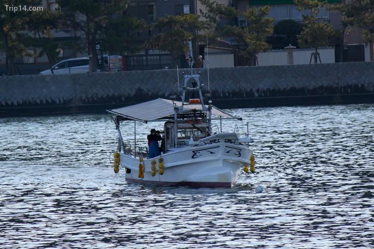 Thuyền đánh cá trên vịnh Hiroshima