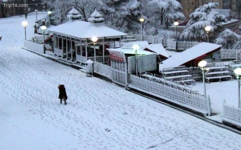 Shimla in Winters © Jannat-e-Shimla / Facebook