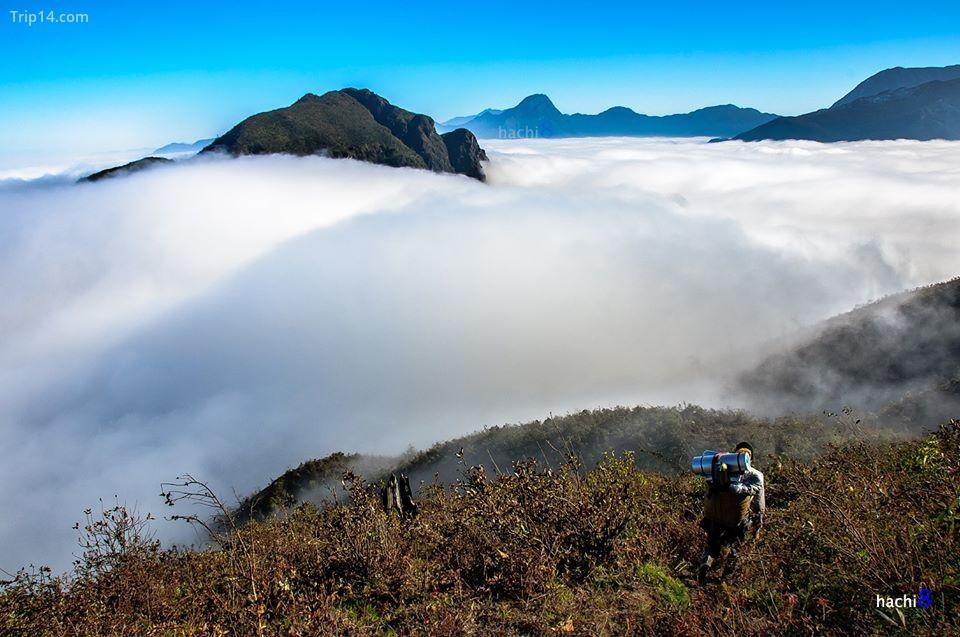 mây trên đỉnh núi Muối