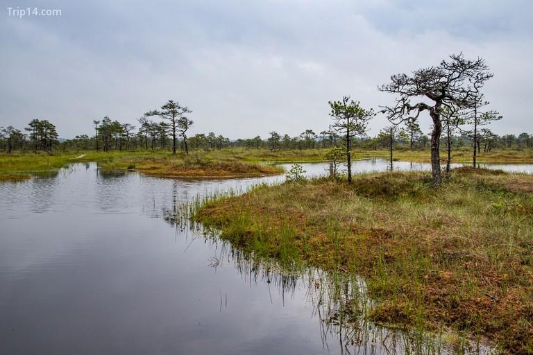 Vườn quốc gia Korvemaa |