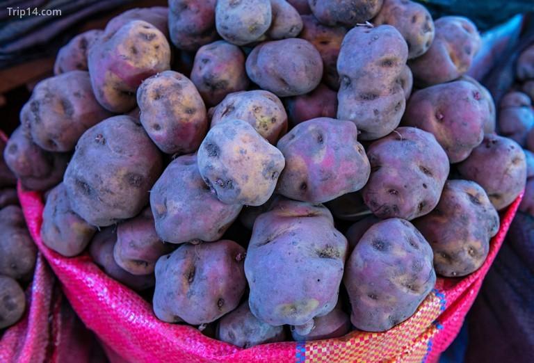 Khoai tây là món ăn chính của ẩm thực Peru