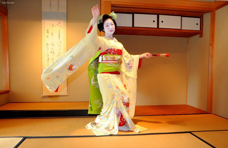Đào tạo học việc geisha