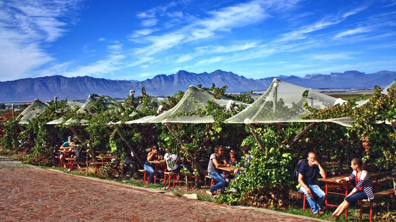 Lễ hội ô liu Riebeek Valley là một lễ hội thú vị ở Cape Town