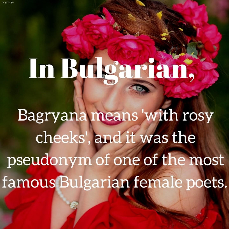 Bagryana   |
