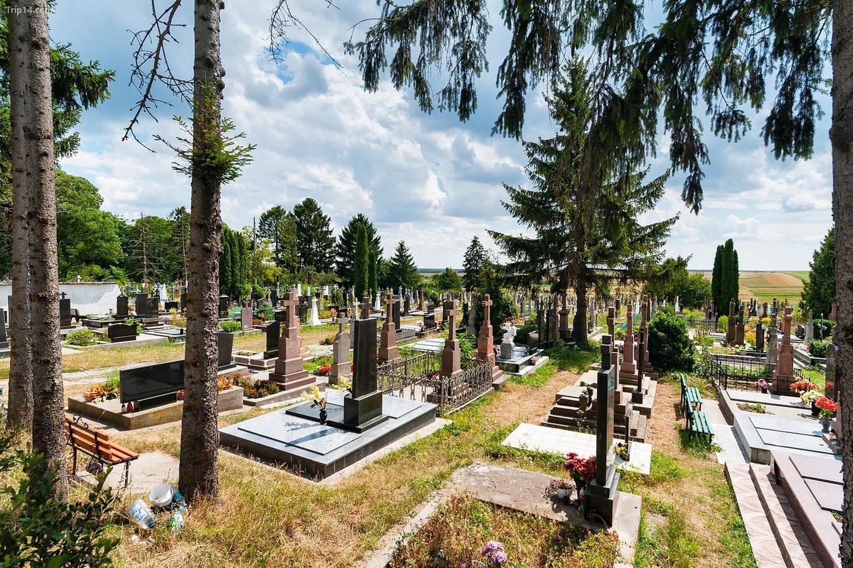 Một nghĩa trang ở Ukraine