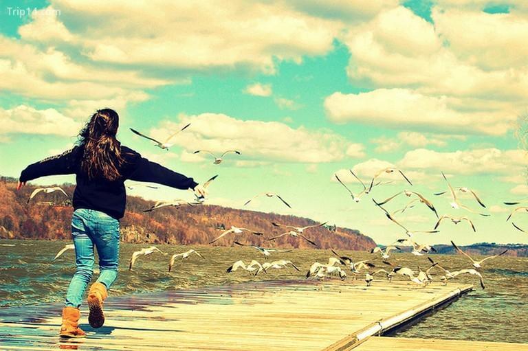 Fly Away © Ben Rea / Flickr