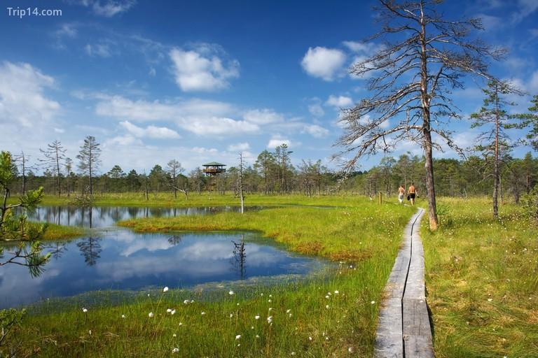 Vườn quốc gia Lahemaa |