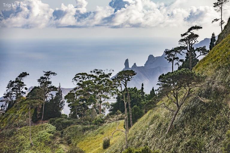 St Helena được coi là một trong những hòn đảo xa xôi nhất thế giới Uwe Moser / Getty Images