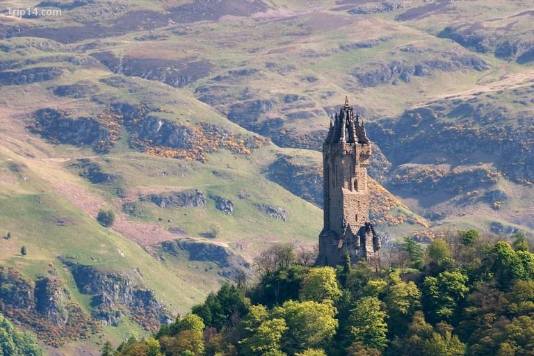 Tượng đài Wallace, Stirling