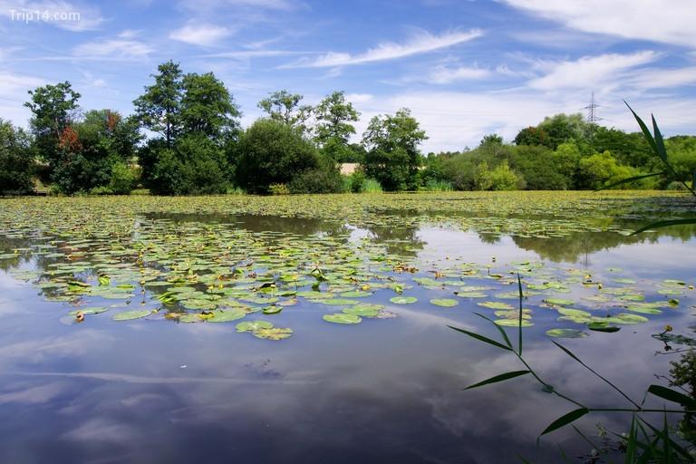 Khu bảo tồn thiên nhiên Bedelands