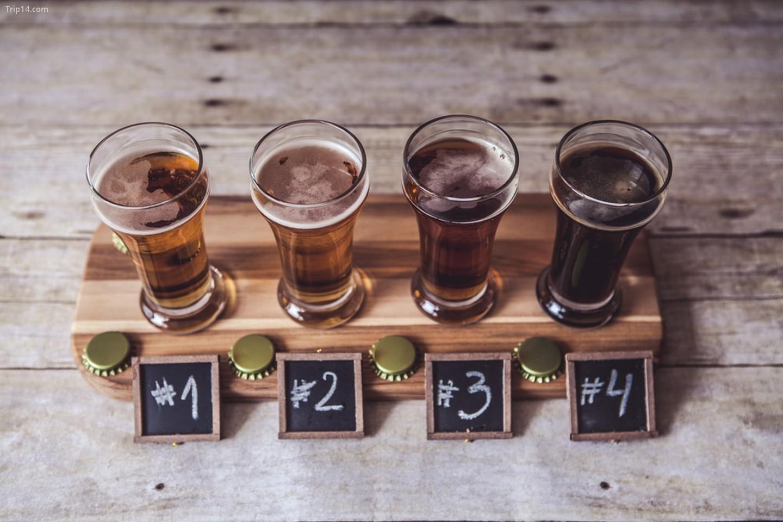Tất cả các loại bia đều có vị như nhau