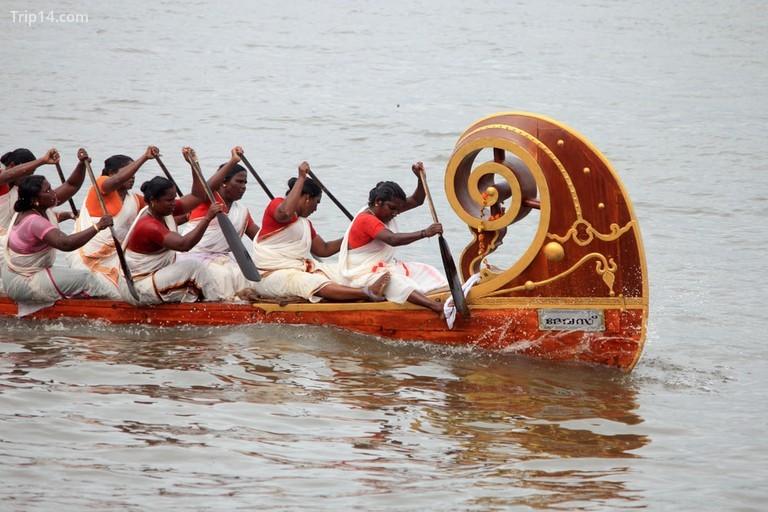 Có một sự kiện đua dành riêng cho các tay chèo nữ © AJP / shutterstock