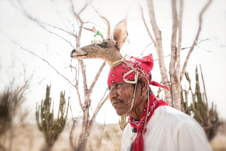 Một trong những điệu múa nghi lễ khác của Mexico là Danza del Venado