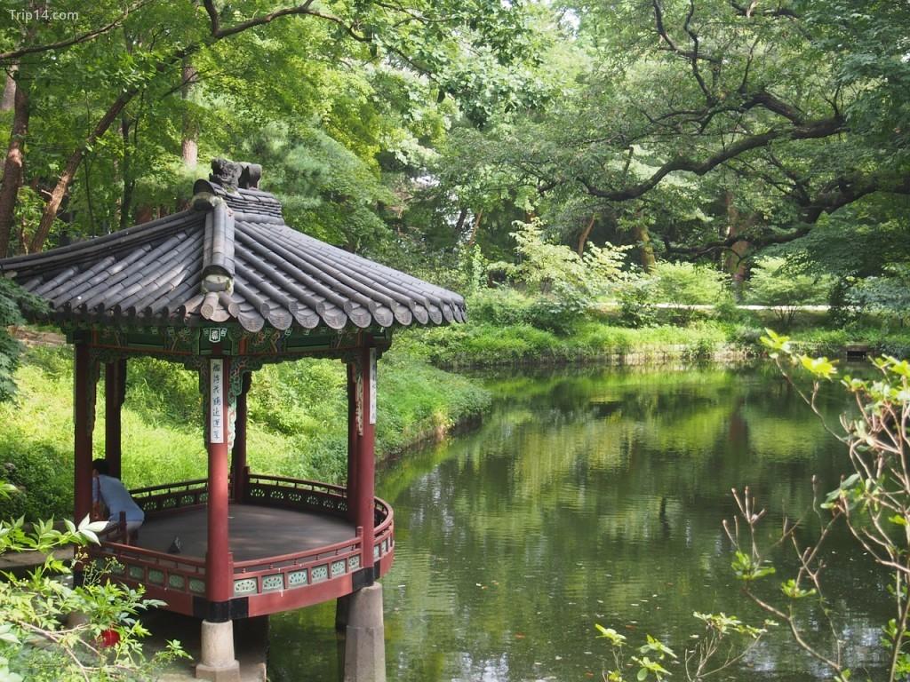 Khu vườn bí mật Changdeokgung | © pixabay
