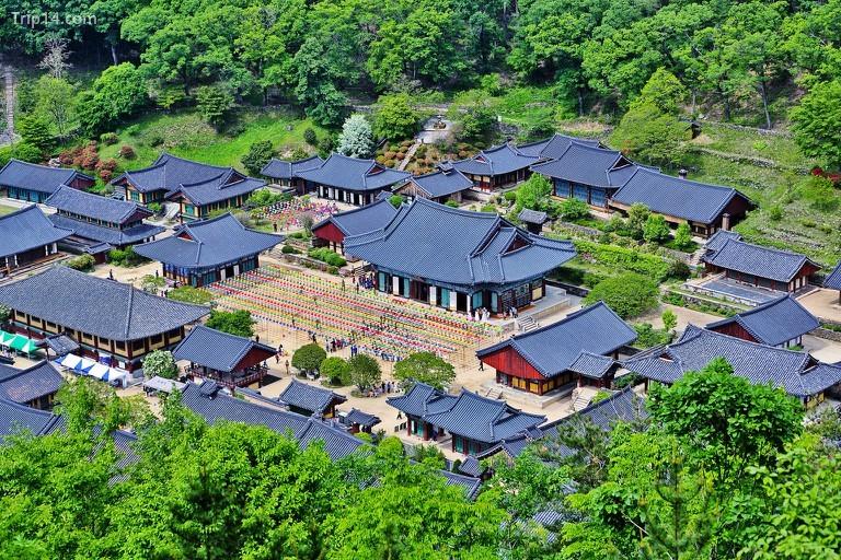 Đền Songgwangsa ở Suncheon © Heui Jong Kim / Flickr
