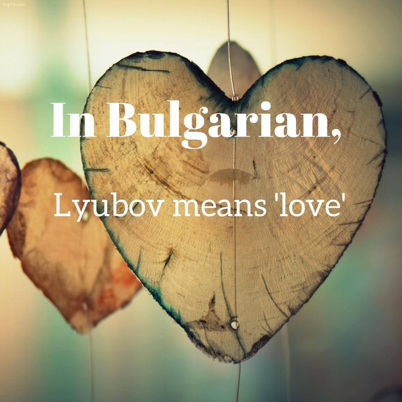 Lyubov - Yêu